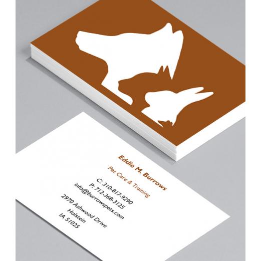 Бизнес Визитки 500 броя вариант (10009) Всички визитки